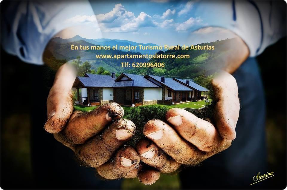 tu casa rural en Asturias al mejor precio