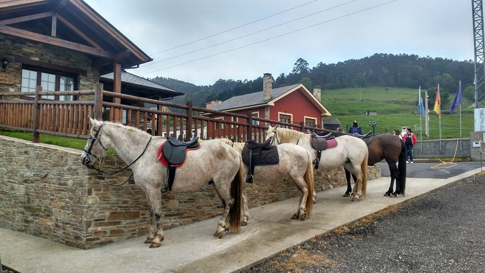 Turismo rural a caballo apartamentos rurales la torre - Casa rural asturias mascotas ...